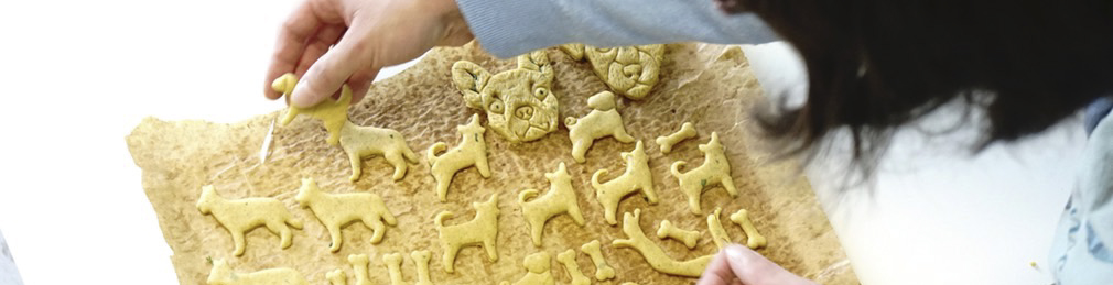 Fair hergestellte gesunde nachhaltige vegane Hundekausnacks werden mit DHL GoGreen unverpackt nach Hause geliefert