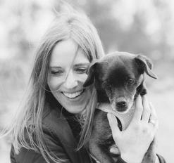 Fleischlose Snacks und Leckerlies für Hunde