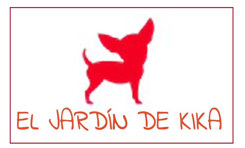 hundemode hundesnacks Hundekauknochen Hundebetreuung