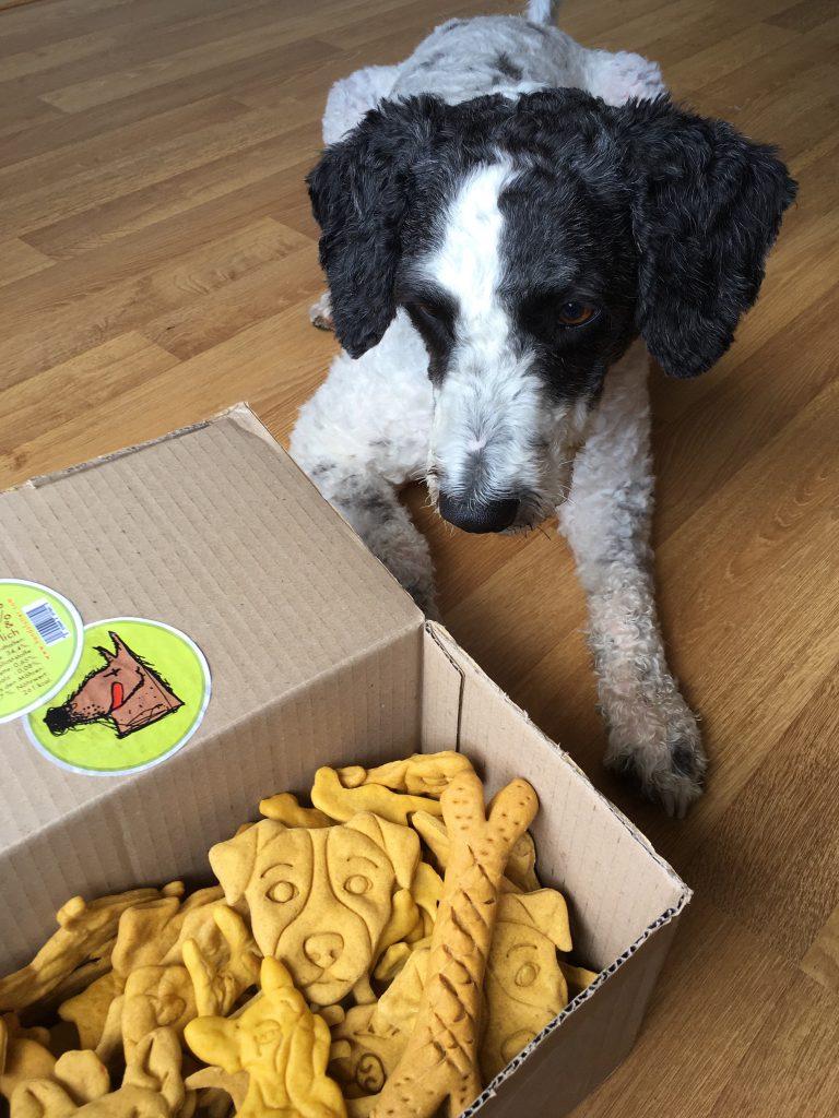 Jetzt hundsfutter unverpackt online shoppen bei hundsfutter.eu Einfach die unnötigen Verpackungen weglassen.