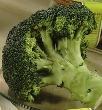 Brokkoli ist eine sehr gesunde Zutat für die Hundesnacks von hundsfutter