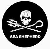 EIn unglaublicher Einsatz und gewaltiger Kämpferwille beim Krieg um das Meer.